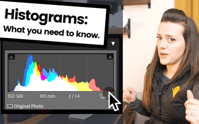What's all the hype about Histograms?