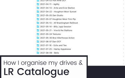 How to organise your files & catalogues