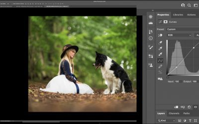 Curves in Photoshop: The 10 Basic Adjustments